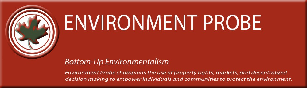 Environment Probe